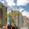 Жилой комплекс Москвы «Бэсткон», или жилье у воды?
